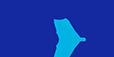 samsung-web-logo